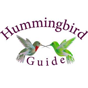 Hummingbird Guide