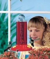 Perky Pet Window Hummingbird Feeder
