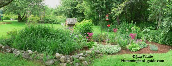 Our Curved Hummingbird Flower Garden Design