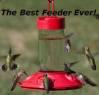 Basic Feeder