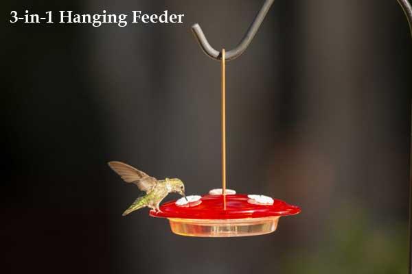 3-in-1 Hanging Hummingbird Feeder