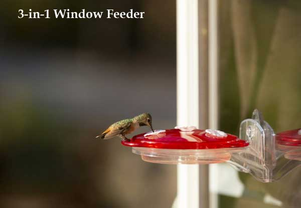 3-in-1 Window Hummingbird Feeder