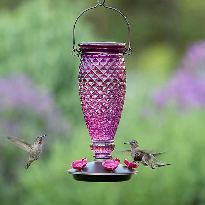 Diamond Wine Top Fill Hummingbird Feeder