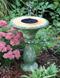 Solar Birdbath