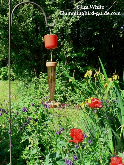 When To Hang Hummingbird Feeders How To Estimate A Date