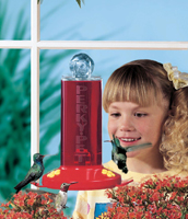 Perky Pet Window Hummingbird Feeder