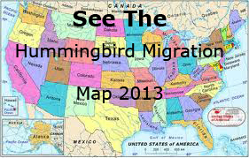 2013 Hummingbird Migration Map Thumbnail