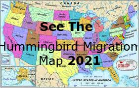 Hummingbird Migration Map 2019 Link