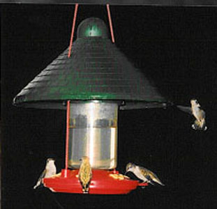 Shaded Hummingbird Feeder