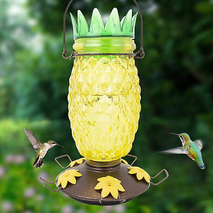 Pineapple Top Fill Hummingbird Feeder