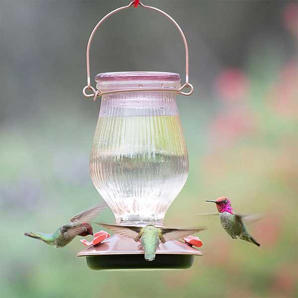 Rose Gold Top Fill Hummingbird Feeder