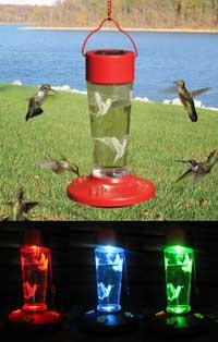 Solar Powered Hummingbird Feeder