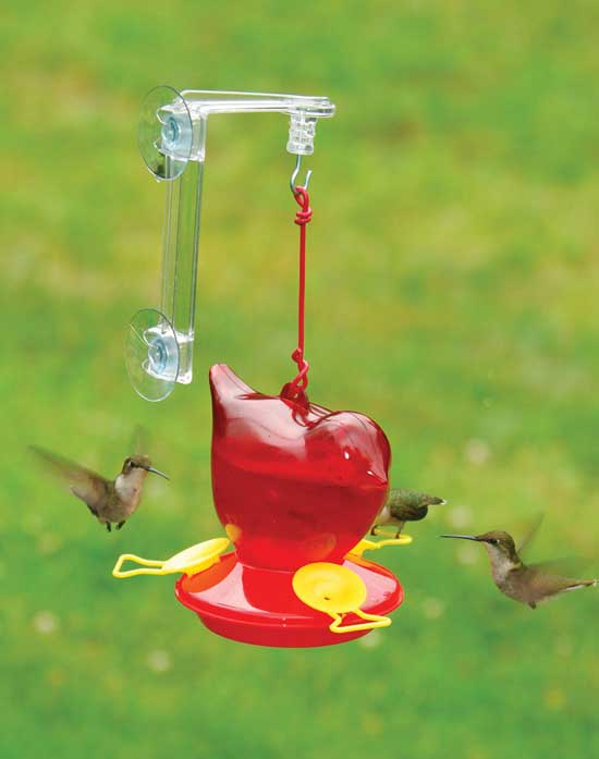 Red Bird Window Hummingbird Feeder Hang It From Your Window