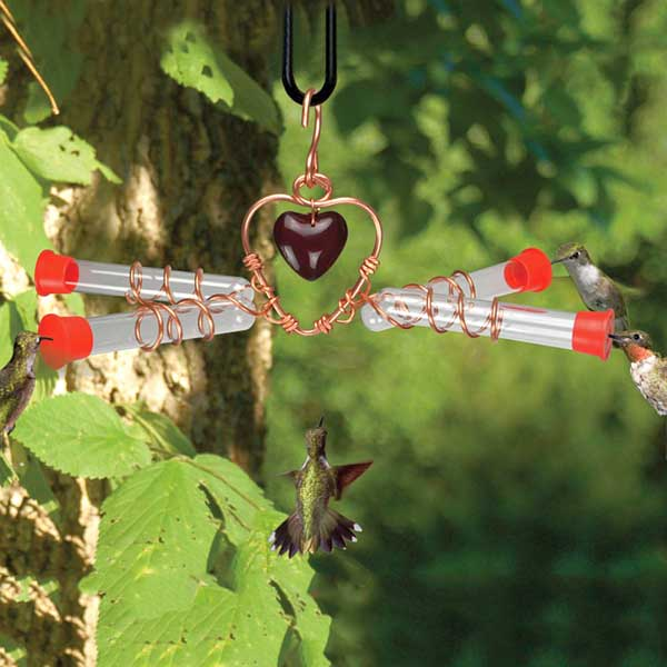 Tweet Heart 4 Tube Hummingbird Feeder in Use