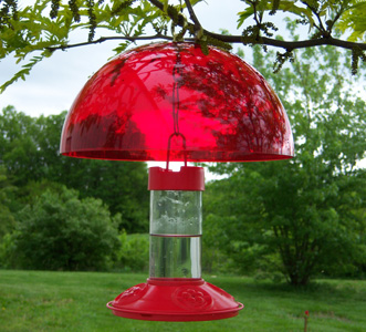Hummingbird Feeder Shade Cap