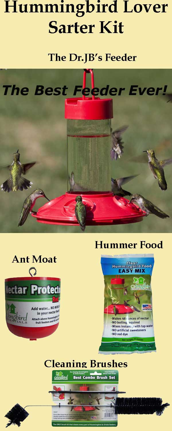 Hummingbird Lover Starter Kit