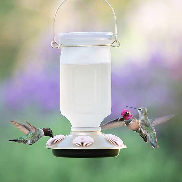 Sun-Kissed Top Fill Hummingbird Feeder