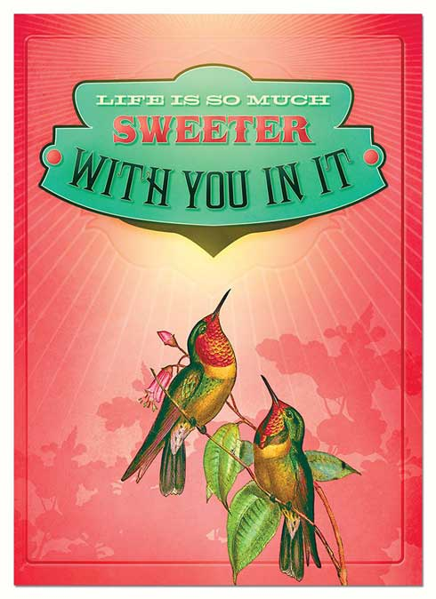 Hummingbird Greeting Cards Beautiful Vibrant Prints On Blank Cards