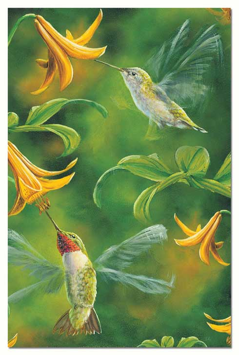 Hummingbird greeting cards beautiful vibrant prints on blank cards ruby wings edition blank greeting cards m4hsunfo