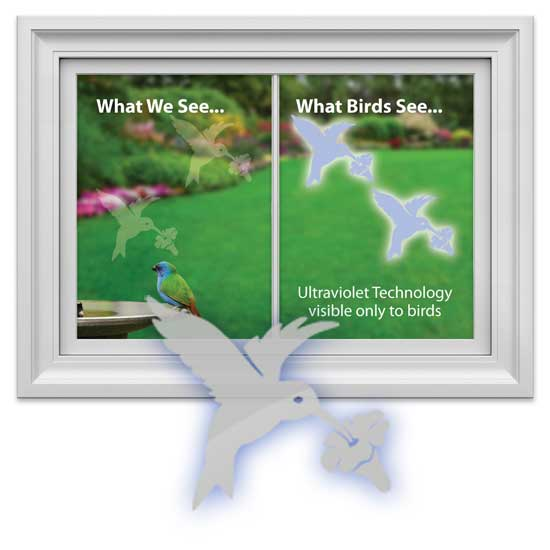 Hummingbird Safety Window Decal Prevents Bird Window Strikes
