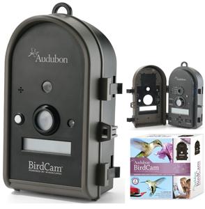 Wingscapes Audubon BirdCam