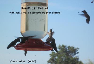 Breakfast Buffet - SRO !