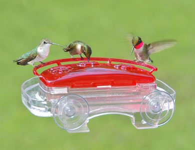 Aspects Jewel Window Hummingbird Feeder-ASPECTS407