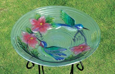 Ecosistemas de Hummingbird - Ecosistemas de EE.UU.