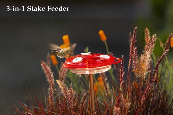 3-in-1 Stake Hummingbird Feeder
