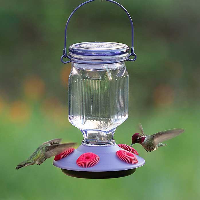 Lavender Field Top Fill Hummingbird Feeder