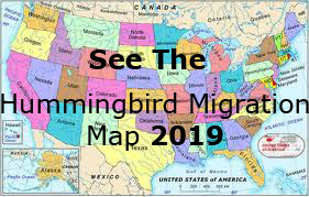 Hummingbird Migration Map 2019