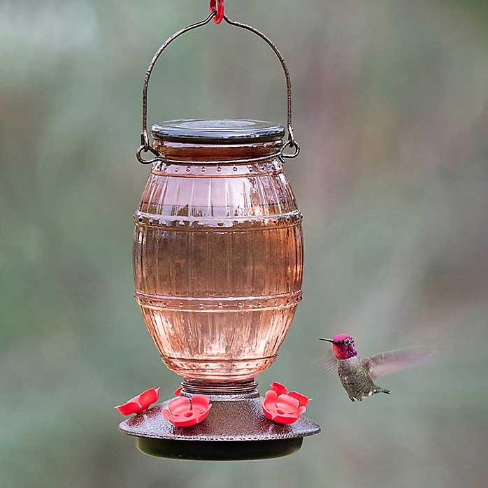 Prohibition Top Fill Hummingbird Feeder