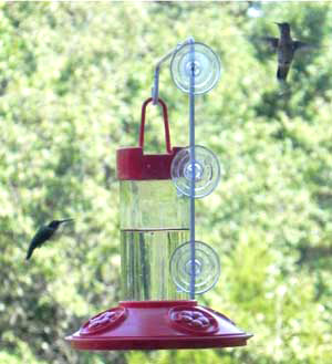 Dr JBs Red Window Hummingbird Feeder