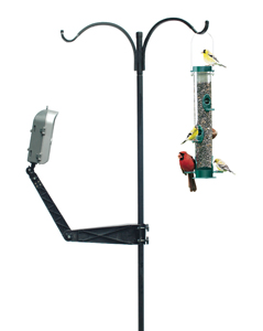 BirdCam Mounting Arm