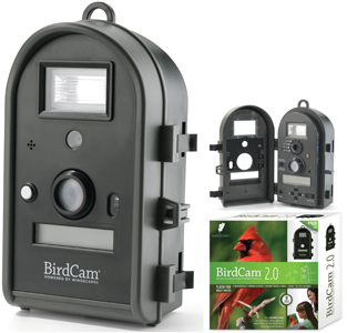 Wingscapes Audubon Birdcam Review And The Birdcam Review